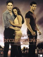 Breaking dawn [Videoupptagning] : the twilight saga P. 1